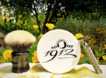 sotd_irish_fern